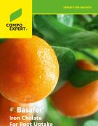 Cover Folder Basafer