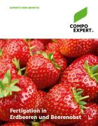 Titel Folder Fertigation in Erdbeeren- und Beerenobst