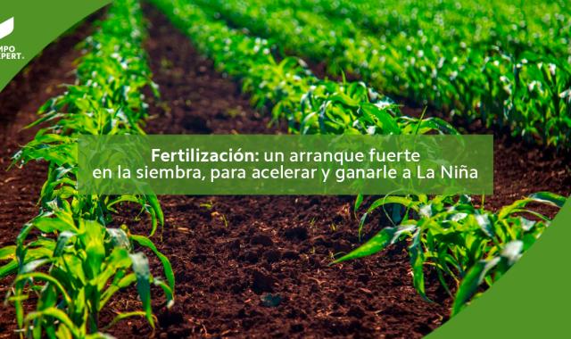 Fertilización: un arranque fuerte en la siembra