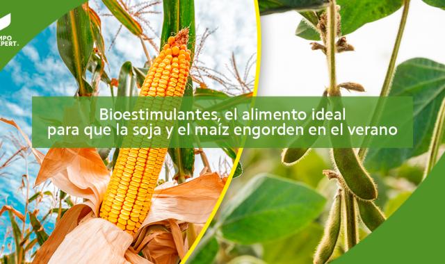 Bioestimulantes
