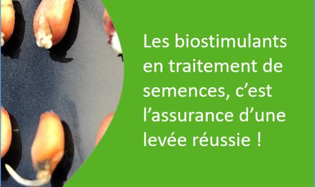 biostimulants en traitements de semences, l'assurance levée