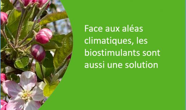 biostimulants une solution face aux aléas climatiques